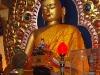 35_buddha
